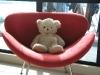 Leon auf dem Sessel